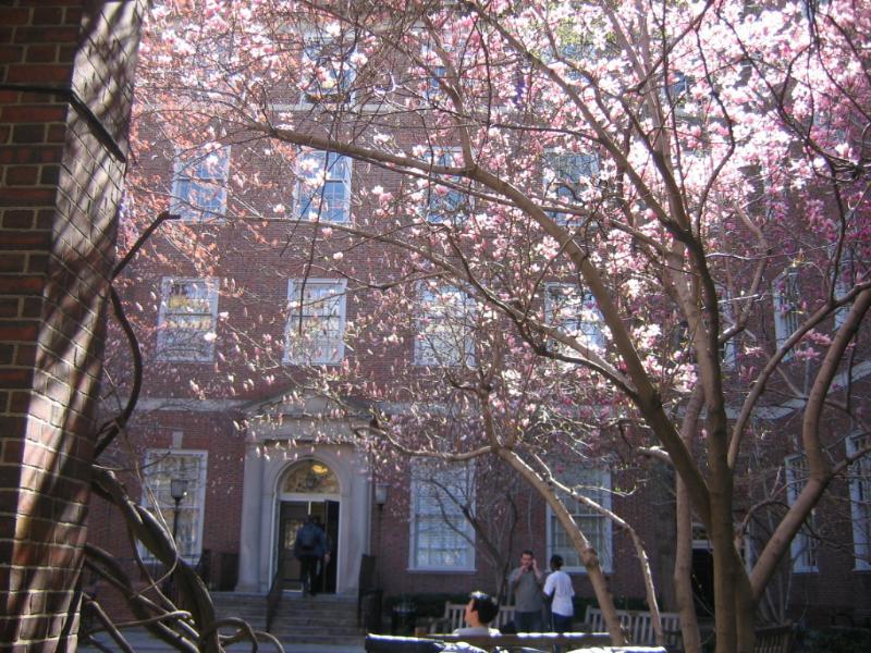 nyu-law-school